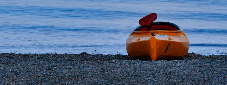 Kayak Or Canoe